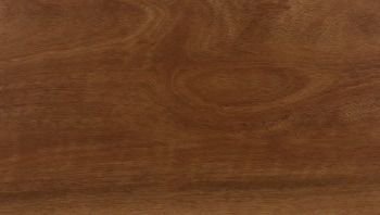 Classic Spotted Gum Swatch